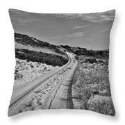 Dune Path In Black And White Throw Pillow