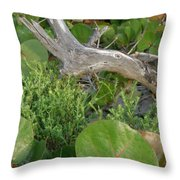Dune Plants Throw Pillow