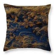 Dunes And Beach House Throw Pillow