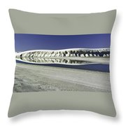 Dunes And Reflections One Throw Pillow