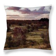 Dunes At Sunrise #2 Throw Pillow