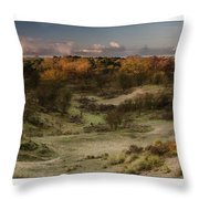 Dunes At Sunrise Throw Pillow
