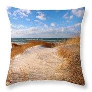 Dunes In Winter Throw Pillow