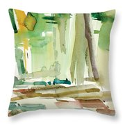 Dunfield-creek-_20-11x14 Throw Pillow