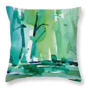 Dunfield-creek-_37-11x14 Throw Pillow