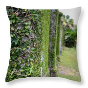 Dungeness Ivy Wall Throw Pillow