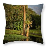 Dunlawton Pond Throw Pillow