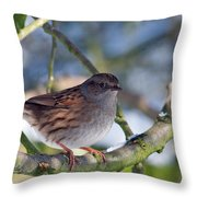 Dunnock On A Snowy Day In Winter Throw Pillow