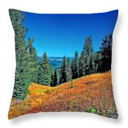 Dunraven Pass Throw Pillow