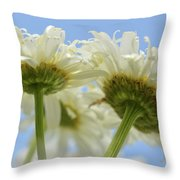 Duo Daisy Throw Pillow