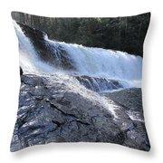 Dupont Forest Hooker Falls Throw Pillow