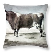 Durham Bull, 1856 Throw Pillow
