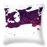 During The Snow Fall Pd 3 Throw Pillow