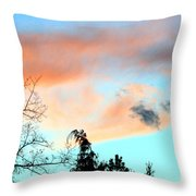 Dusk And Dogs Throw Pillow