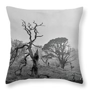 Dusk, Crannoch Woods Throw Pillow