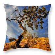 Dusk Dance Throw Pillow by Skip Hunt