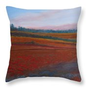 Dusk Falls On The Pumice Field Throw Pillow