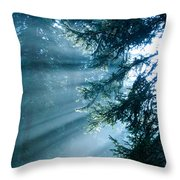 Dusk In Ashenvale Throw Pillow