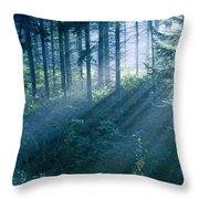 Dusk In Ashenvale II Throw Pillow