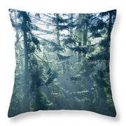 Dusk In Ashenvale IIi Throw Pillow