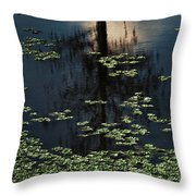Dusk In The Swamp Throw Pillow