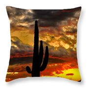 Dusk To Dawn Throw Pillow