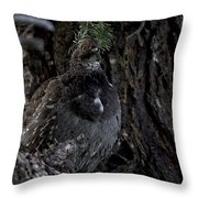 Dusky Lady  Throw Pillow
