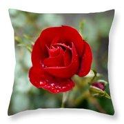 Dusky Red Throw Pillow