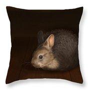 Dust Bunny Throw Pillow
