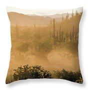 Dust Storm In The Desert Throw Pillow