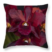 Dusty Red Orchid Throw Pillow