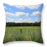Dutch Blue Throw Pillow