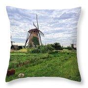 Dutch Icon Throw Pillow