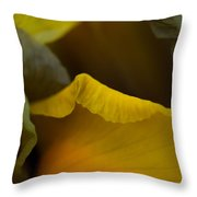 Dutch Iris Bronze Beauty 2 Throw Pillow