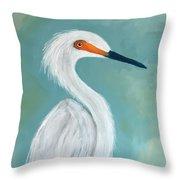 Dutchess Egret Art By Brenda Boss Throw Pillow