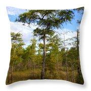 Dwarf Cypress Tree Throw Pillow