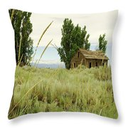 Dyer Country Home Throw Pillow