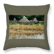 Dyflin Viking Village, Ireland Throw Pillow
