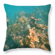 Dying Coral Throw Pillow