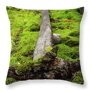 Dying Tree In The Forest Throw Pillow