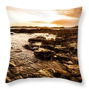 Dynamic Ocean Panoramic Throw Pillow