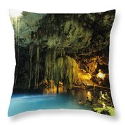 Dzitnup Natural Well Throw Pillow