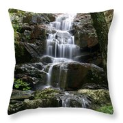 E Falls Throw Pillow