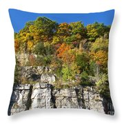 Eager For Autumn Colors Throw Pillow