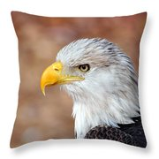 Eagle 10 Throw Pillow