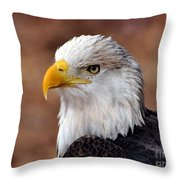 Eagle 25 Throw Pillow