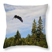 Eagle At Scott Brook Throw Pillow