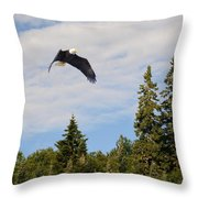 Eagle At Scott Brook II Throw Pillow