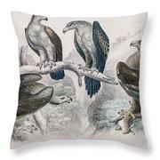 Eagle Birds Print Throw Pillow