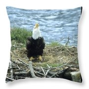 Eagle Calls In Its Mate Throw Pillow